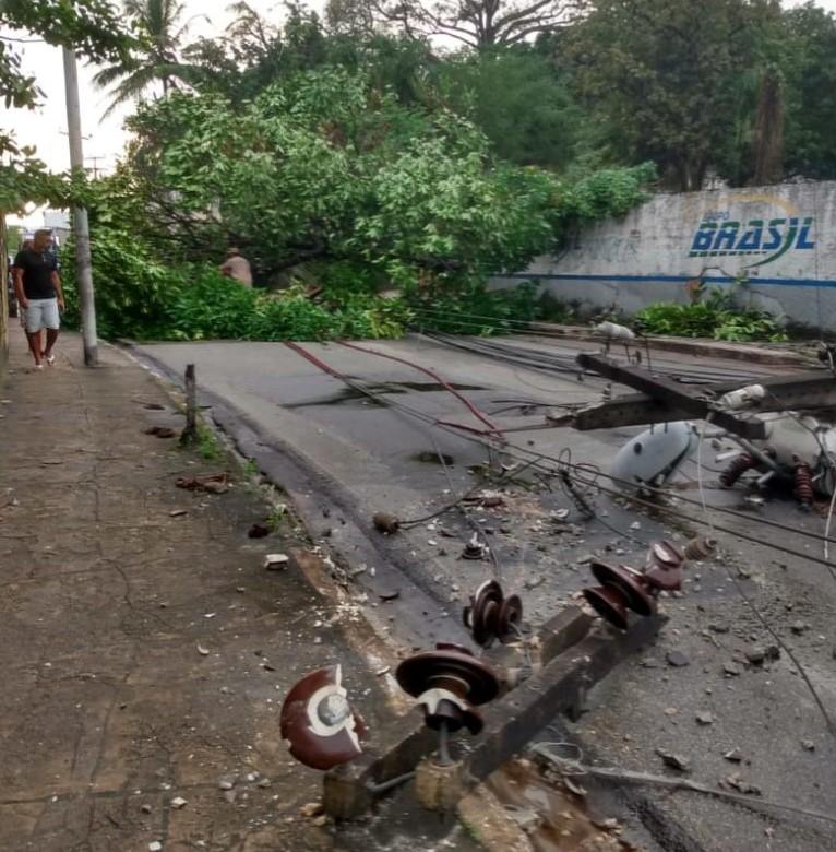 Árvore e poste caíram em avenida do Anil